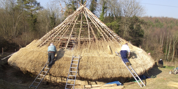 Thatching the Iron Age House roof