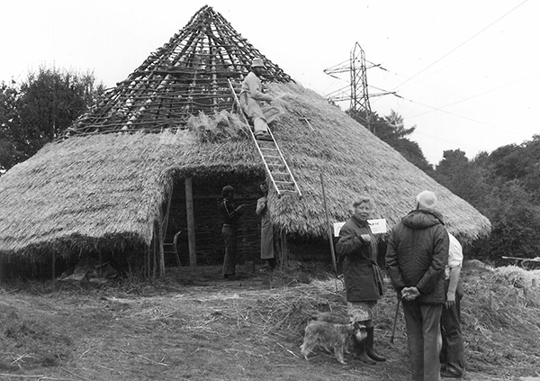 Building the Iron Age House