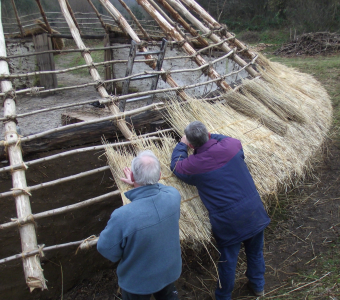 Volunteers thatching the Iron Age House roof