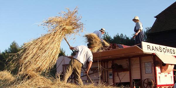 harvest_farm