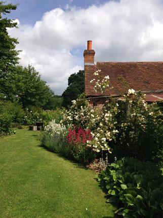 Astleham-Garden-June-2015