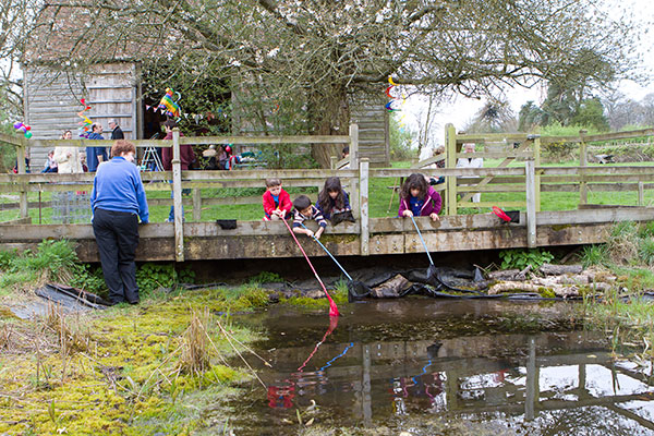 Pond dipping workshop for schools