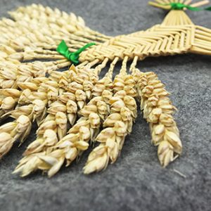 corn dolly workshop