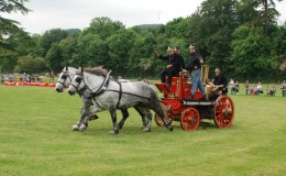Working heavy horse show buckinghamshire