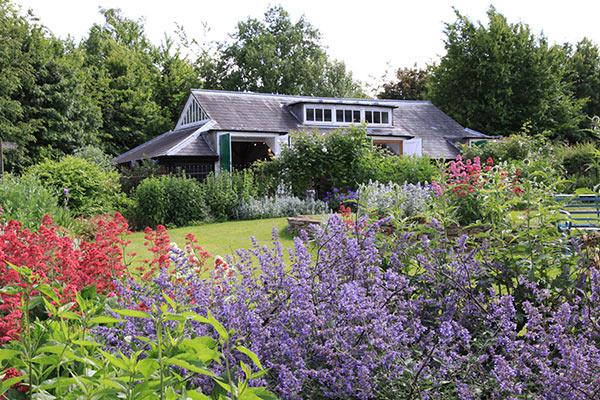 Gardens at COAM
