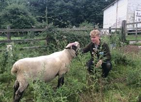 Josh-and-lamb-COAM