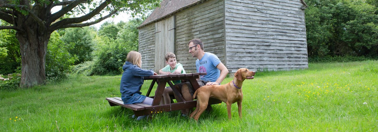 Dog friendly day out in Bucks